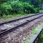 2歳児と電車で長距離移動。何が必要?どう過ごす?